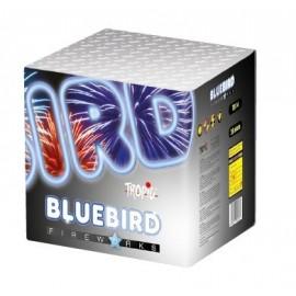 Bluebird 36shots